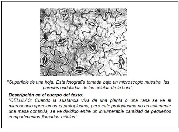 QuimicaViva vol16 num2