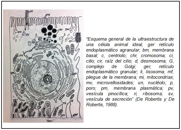Editorial: Del arte, los colores y la química